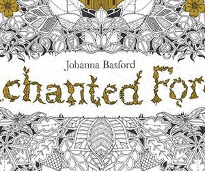 Children's Book of the Month: Enchanted Forest