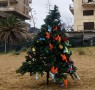 A Cypriot Christmas Tree by Victoria Hislop